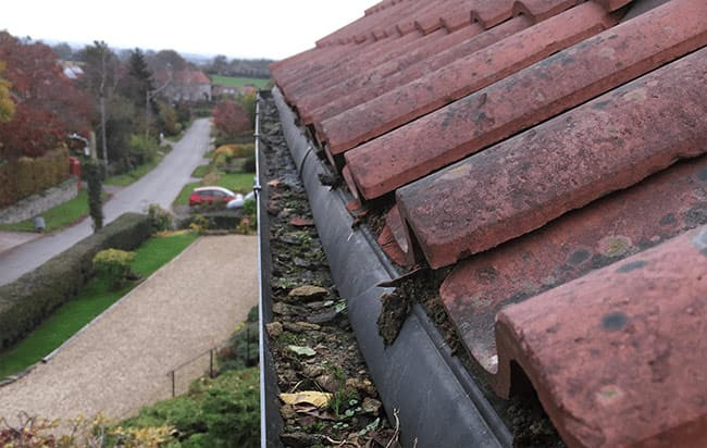 Gutter Cleaning in Portreath