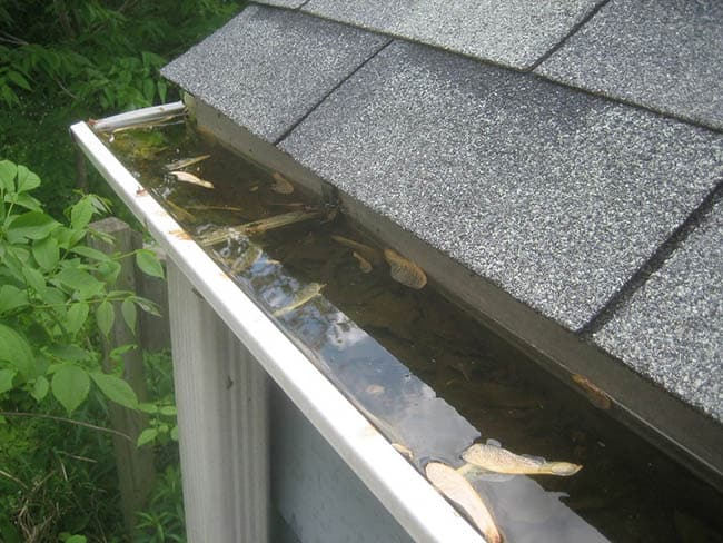 Blocked Gutters in Brinsea